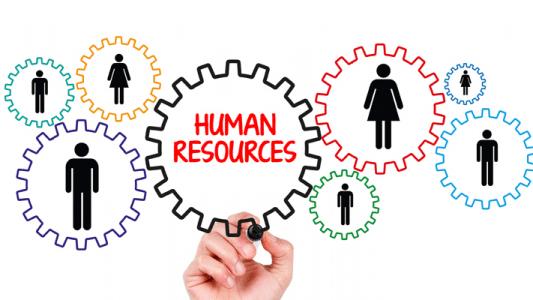 La nuova organizzazione del lavoro: verso una Digital Organization image